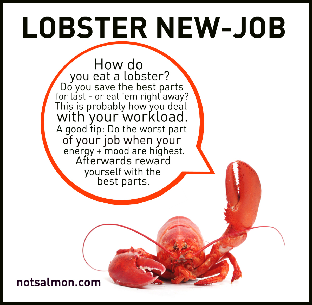 lobster new job a career tip inspired by a lobster karen lobster new job a career tip inspired by a lobster