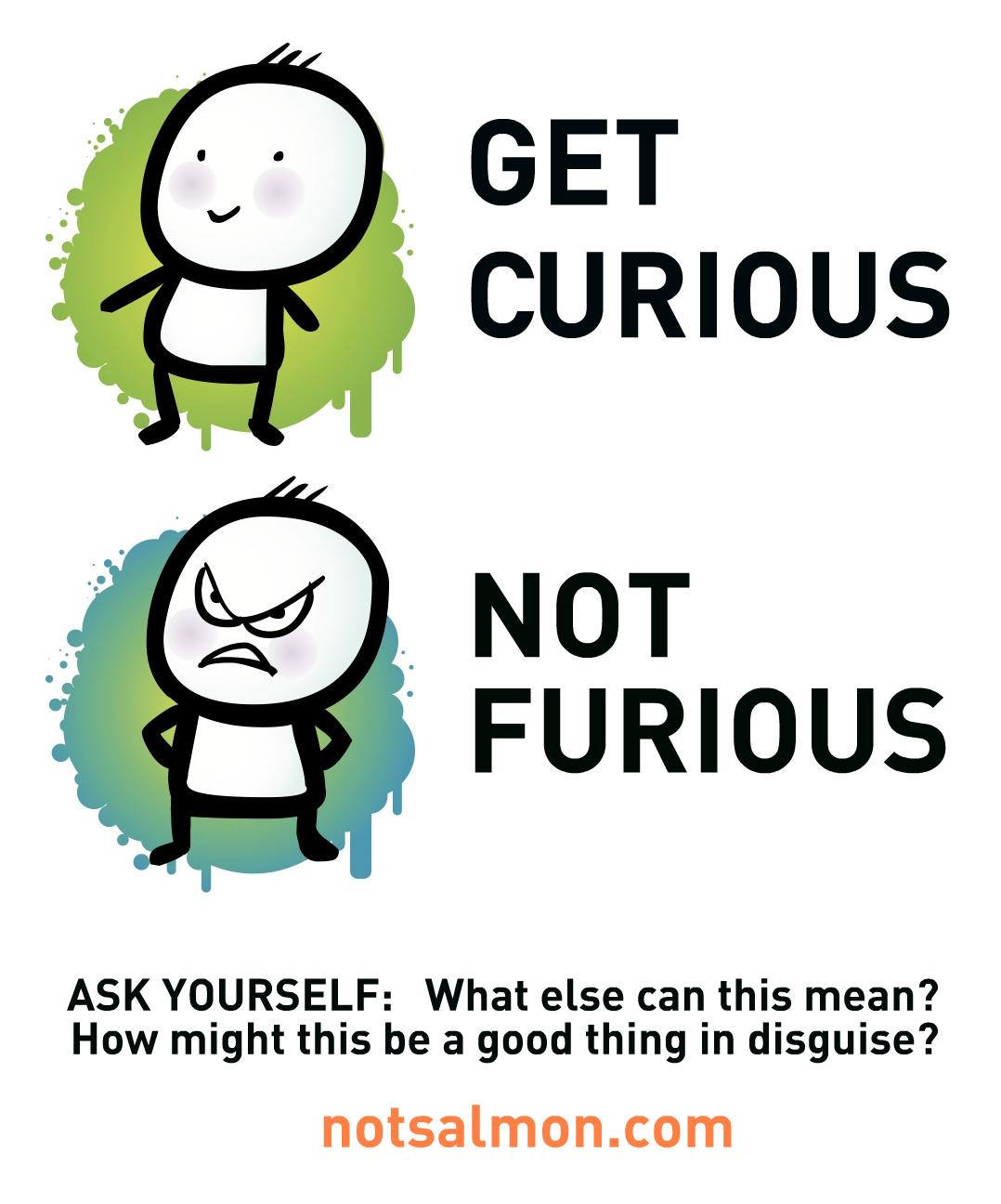 POSTER-CURIOUS-NOT-FURIOUS.jpg