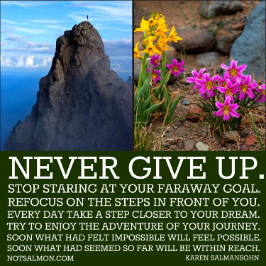 Never give up - Karen Salmansohn