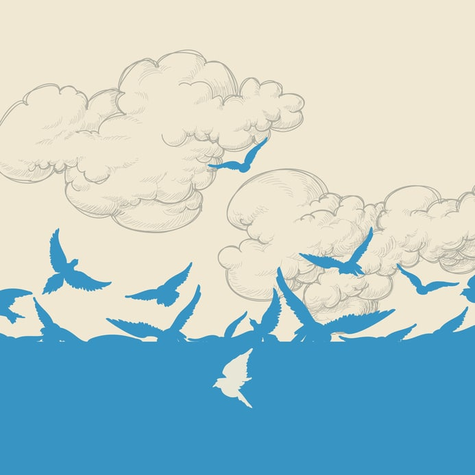 salmansohn Blue birds flying over sky vector illustration