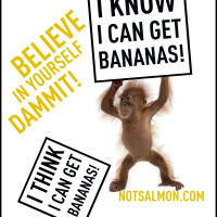 POSTER-CHIMP KNOW