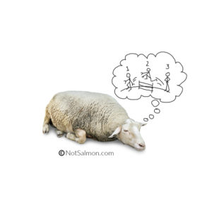 sleep-article-image