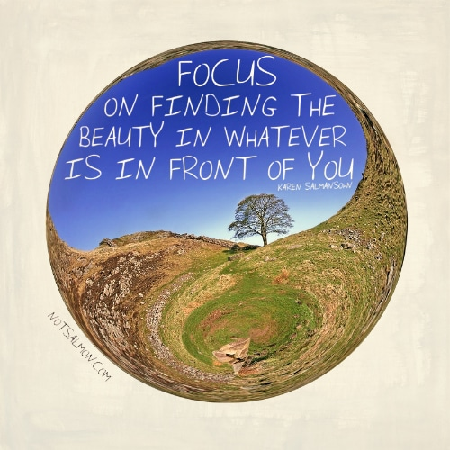 focus on finding beauty in front of you Karen Salmansohn