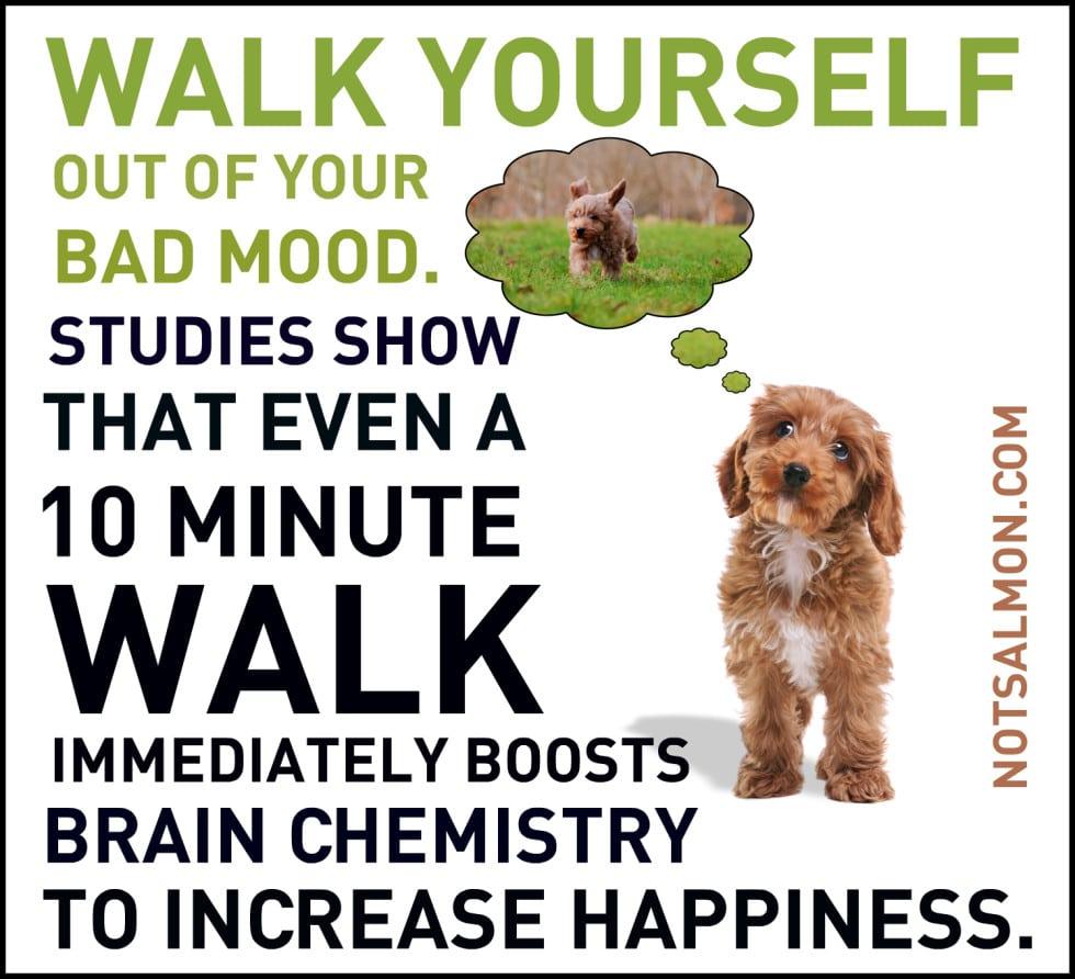 the benefits of walking benefits of walking