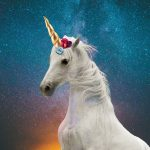 best Funny Unicorn Quotes To Make You Smile And Laugh