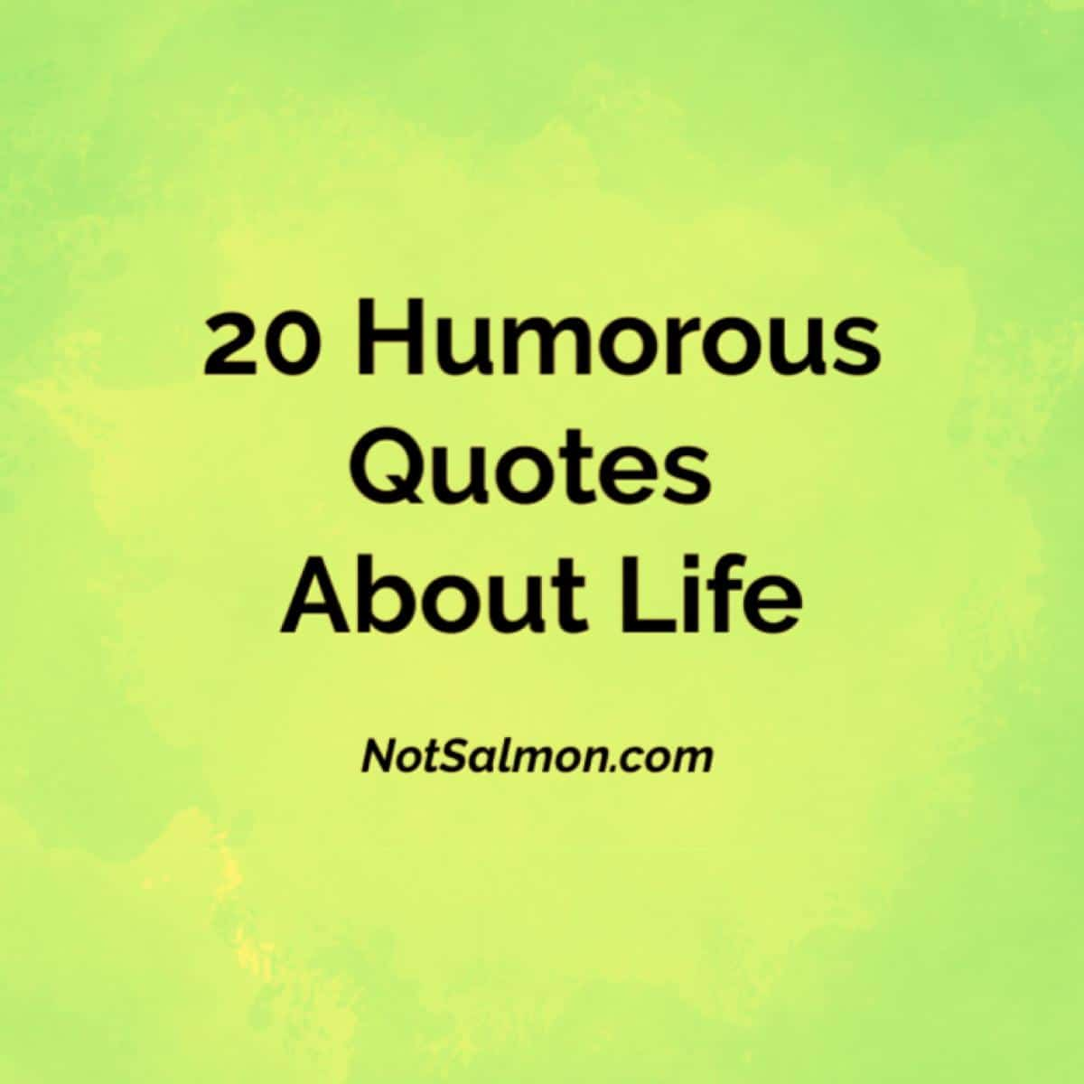 20 Humorous Quotes About Life - Karen Salmansohn