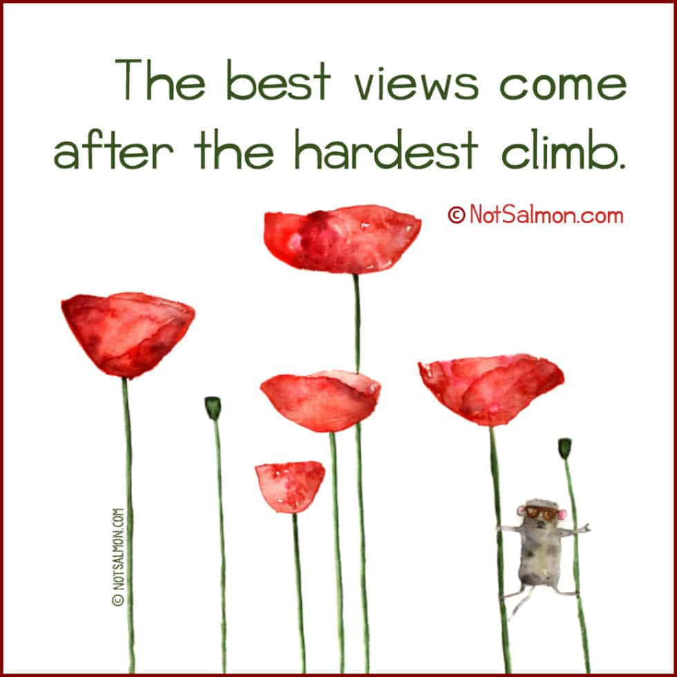 happiest life quotes the hardest climb