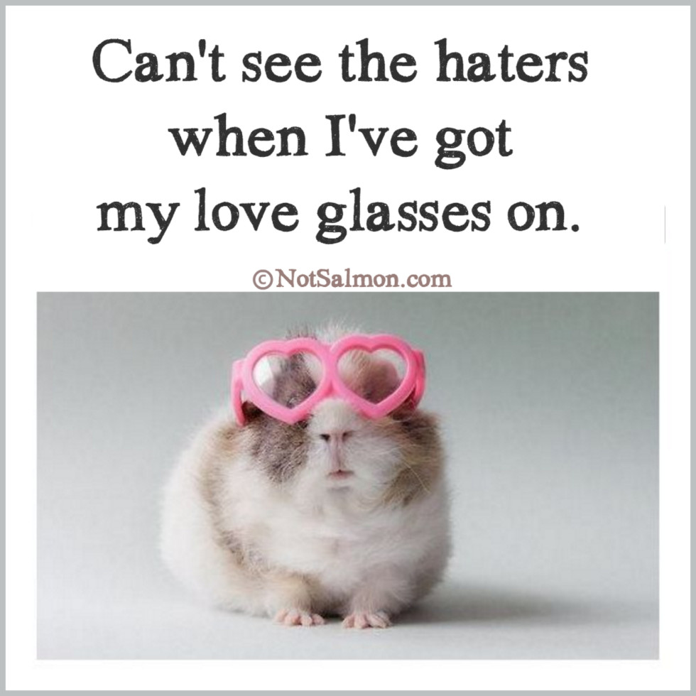 quote haters love glasses