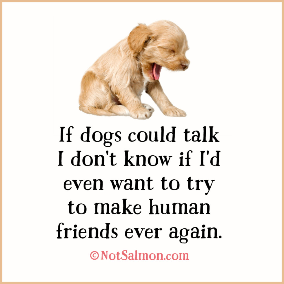 quote dogs talk friend