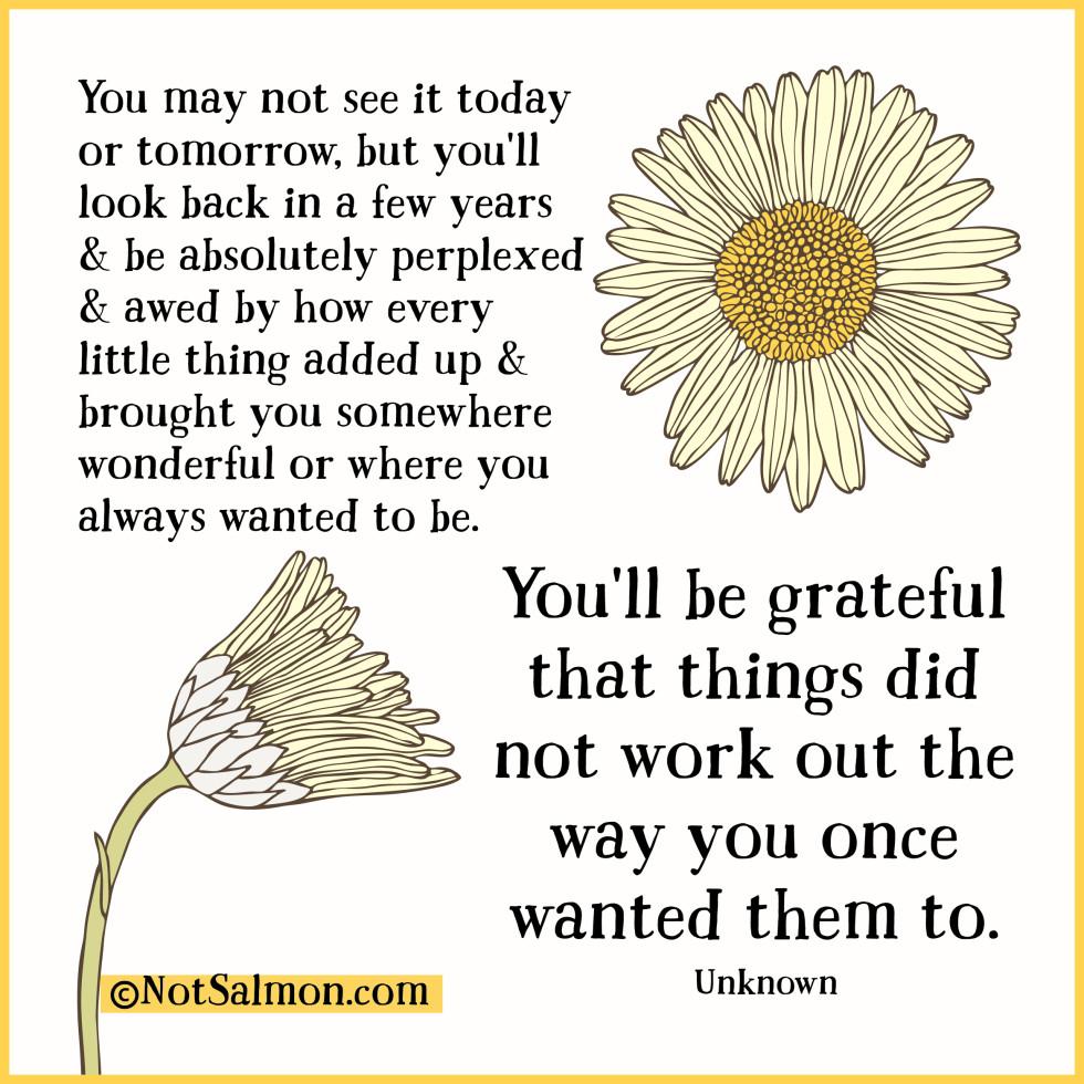 quote-perplexed-awed-grateful.jpg