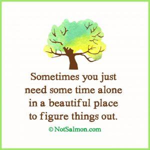 alone time beneath a tree