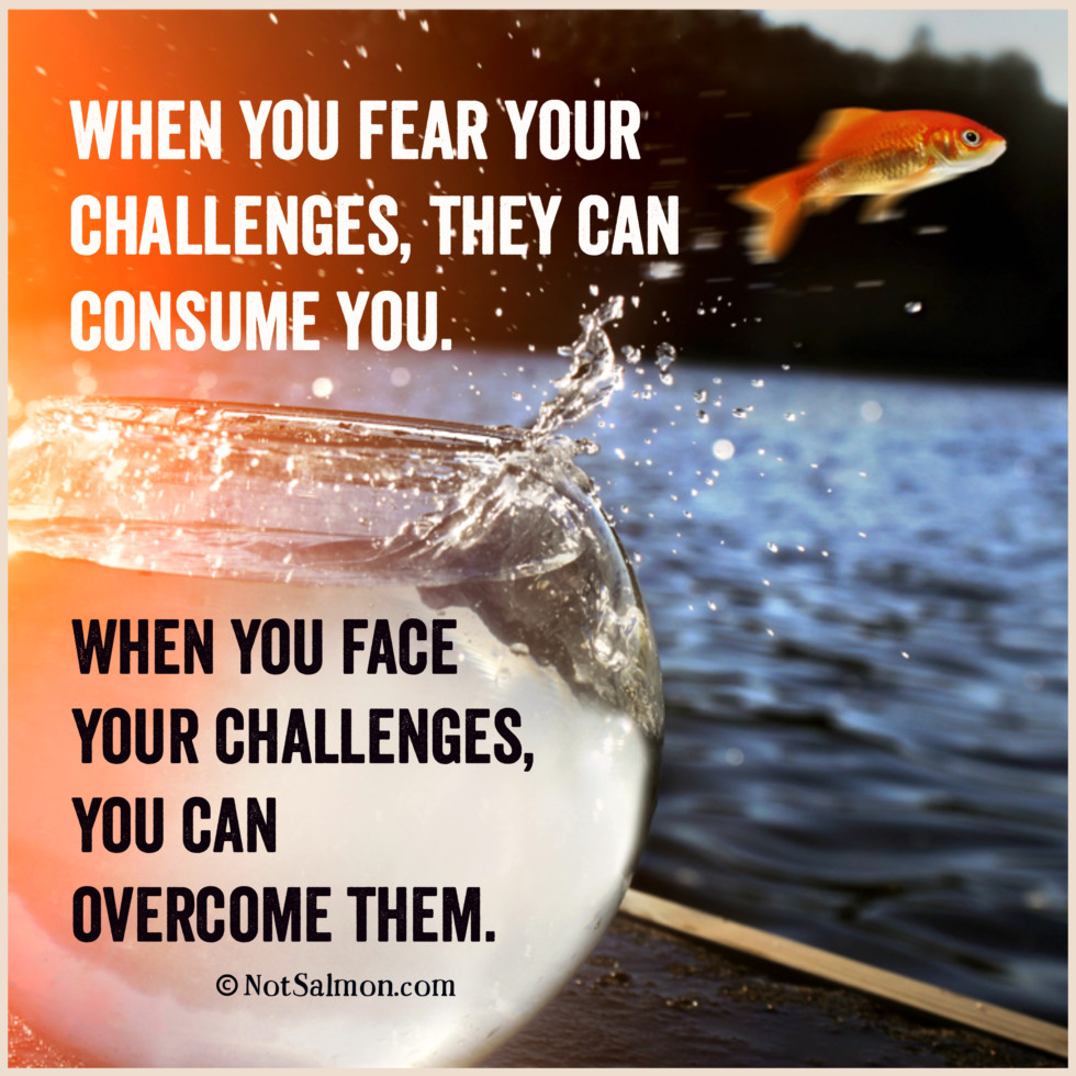 quote challenges fear
