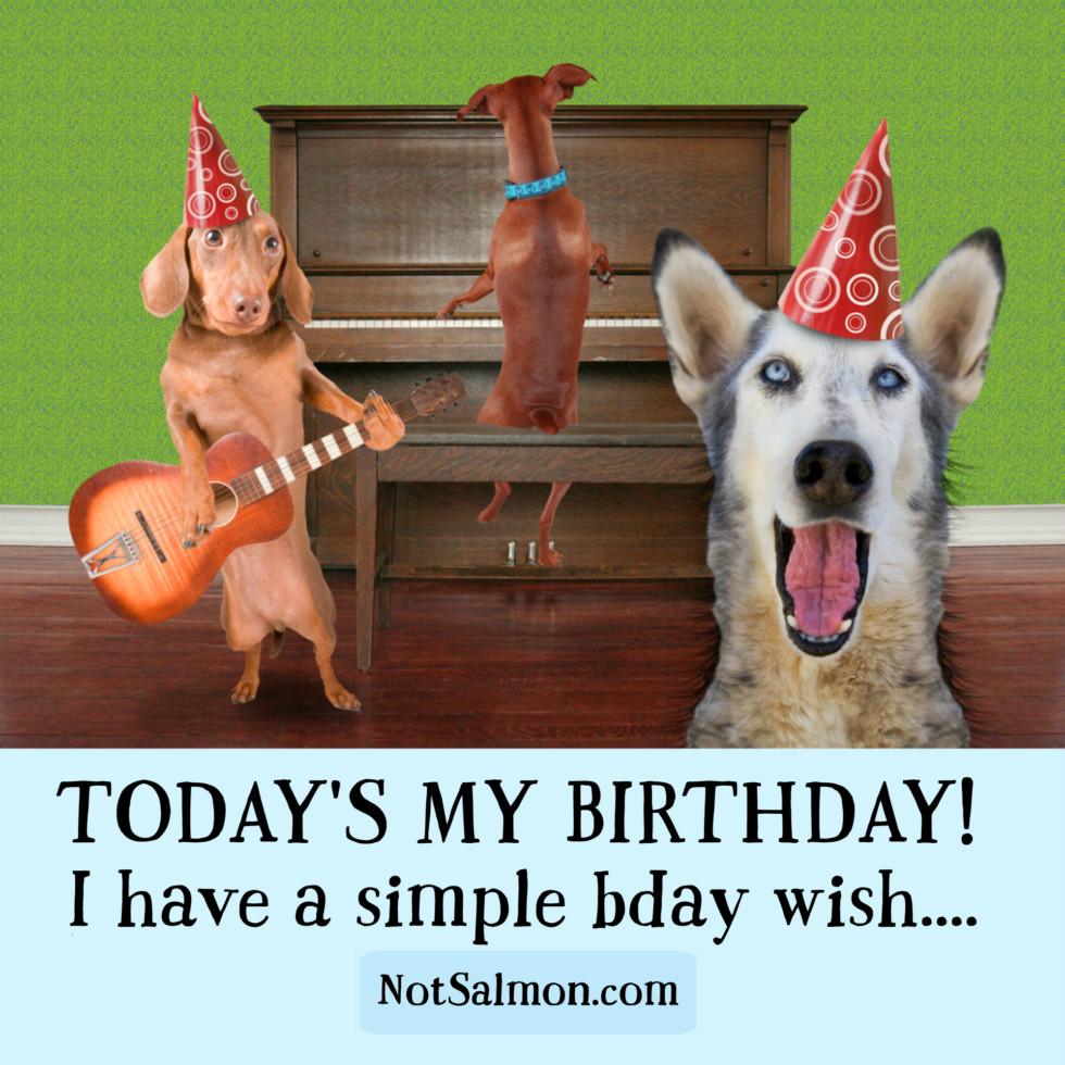 birthday wish newsletter 2016
