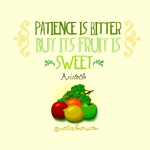 aristotle quote about patience