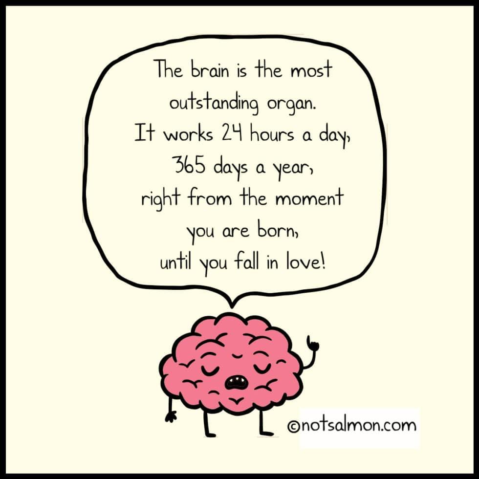 brain love funny quote