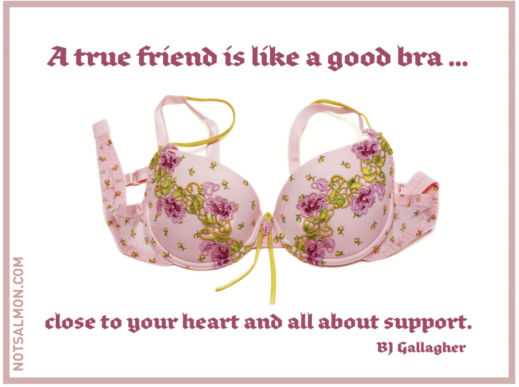friends like a bra funny quote about life