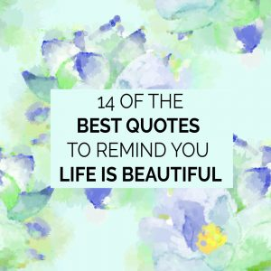Image of: Wallpapers Heres Quickie Cliff Notes Reminder Of 14 Life Is Beautiful Quotes To Help You Remember To Appreciate The Beauty Around You And Stay Directed Toward Notsalmon 14 Of The Best Quotes To Remind You Life Is Beautiful