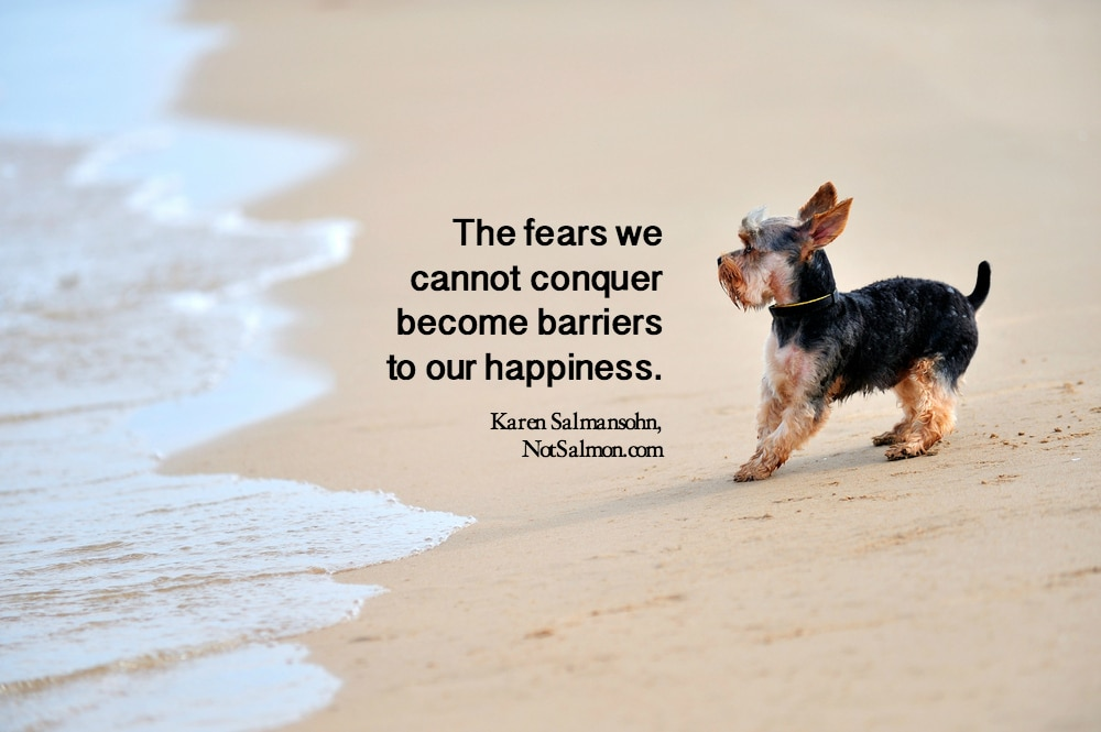 10 Uplifting Courage Quotes About Conquering Our Fears