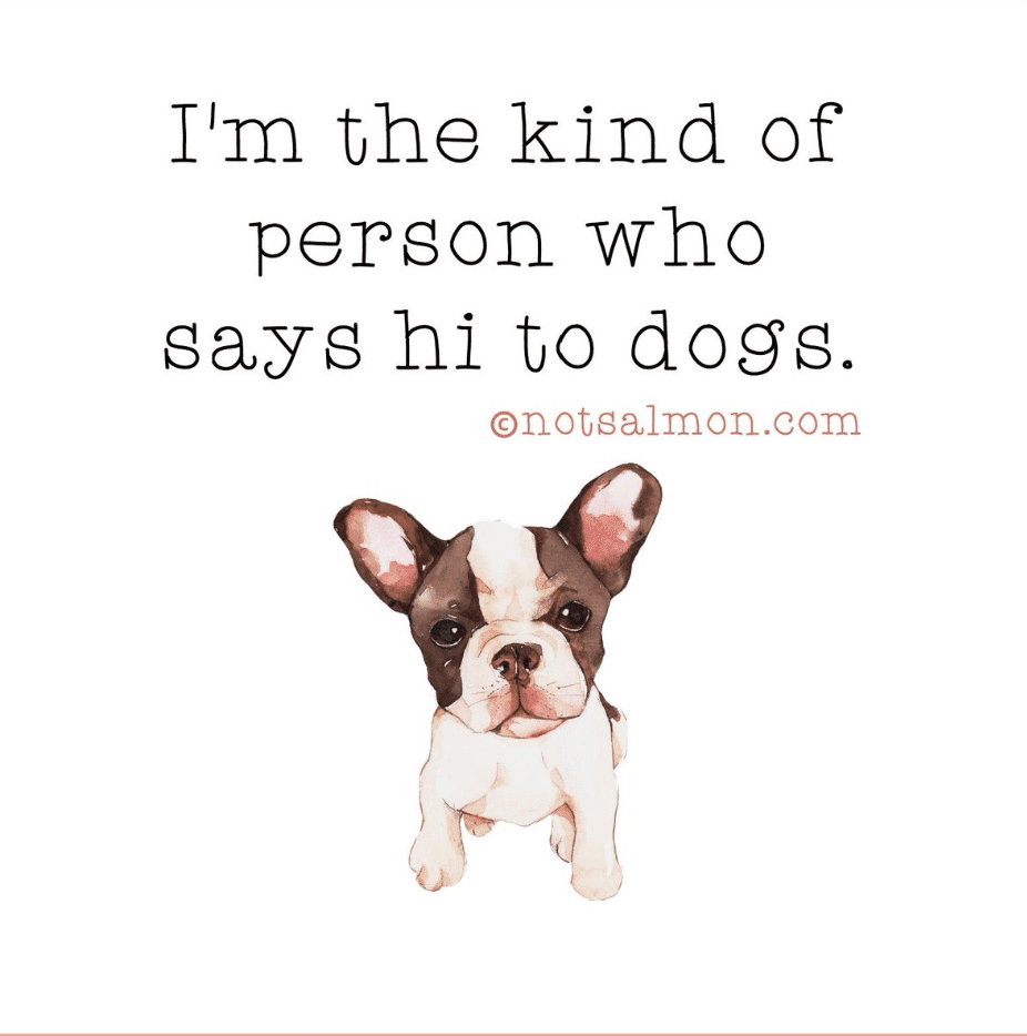 I'm the kind of person who says hi to dogs. Karen Salmansoh