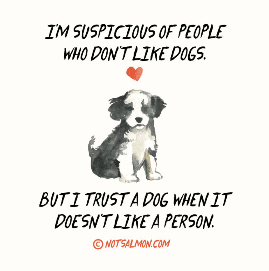 I'm suspicious of people who don't like dogs. But I trust a dog when it doesn't like a person. Karen Salmansohn
