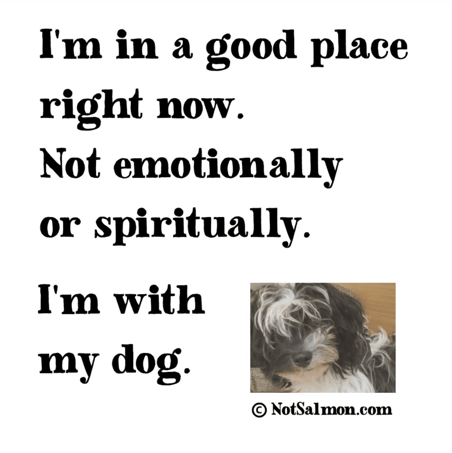 Dog Quote about dogs helping you spiritually.
