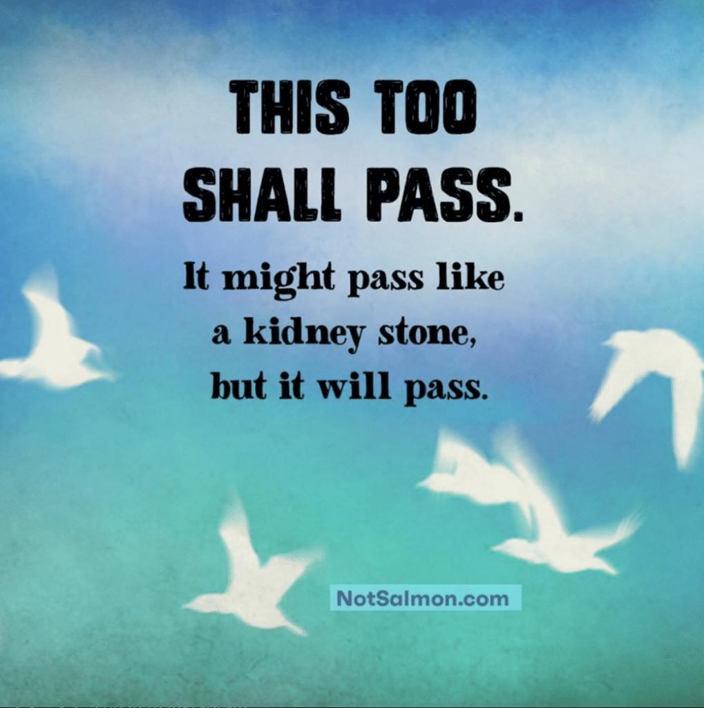 hilarious life quote
