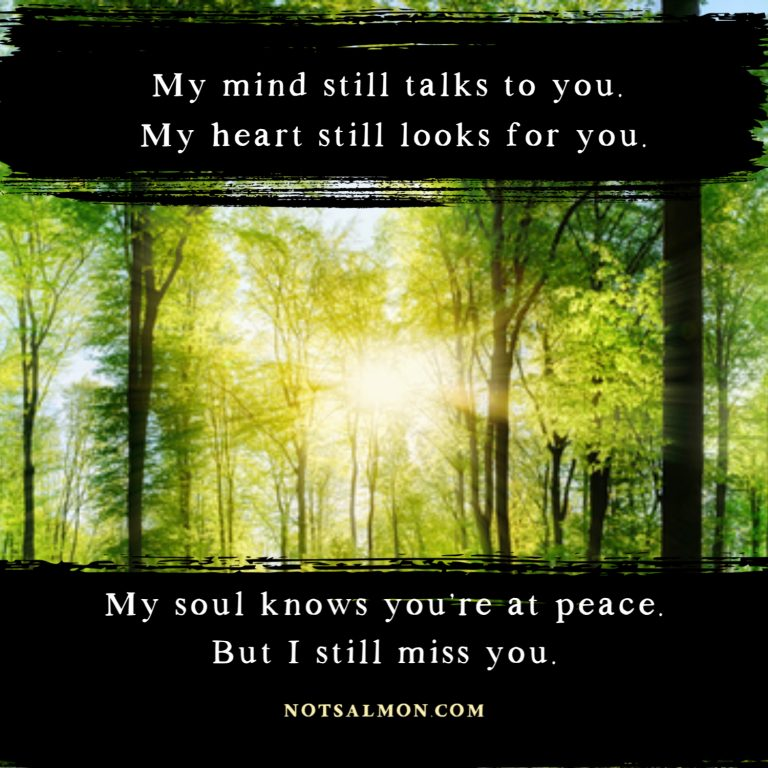 quote Missing Someone Who Passed