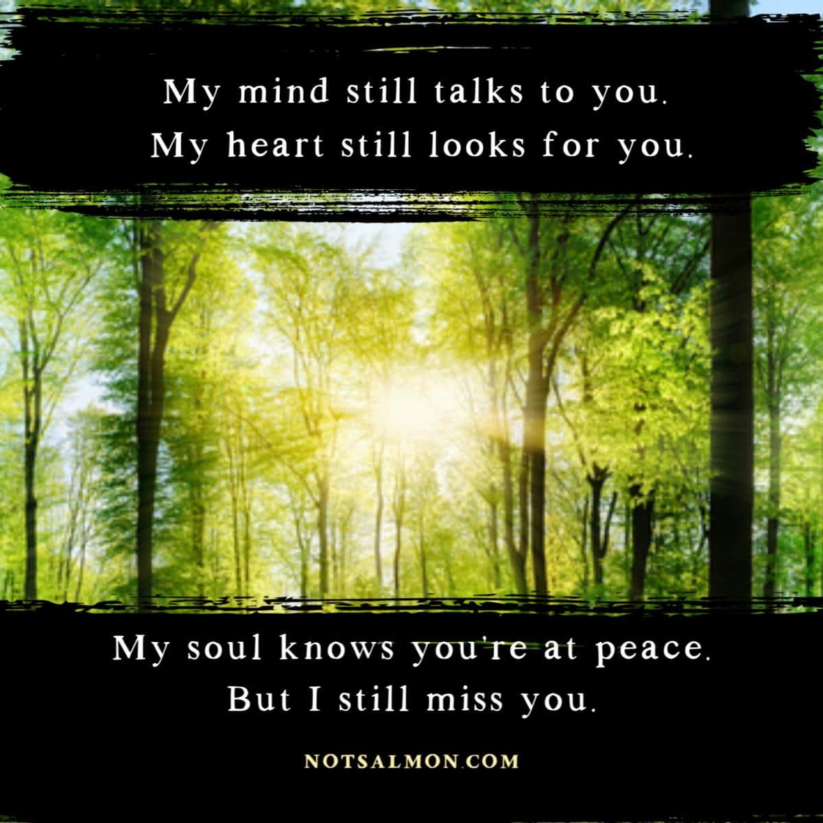 Missing Someone Who Passed Away This Quote Will Help