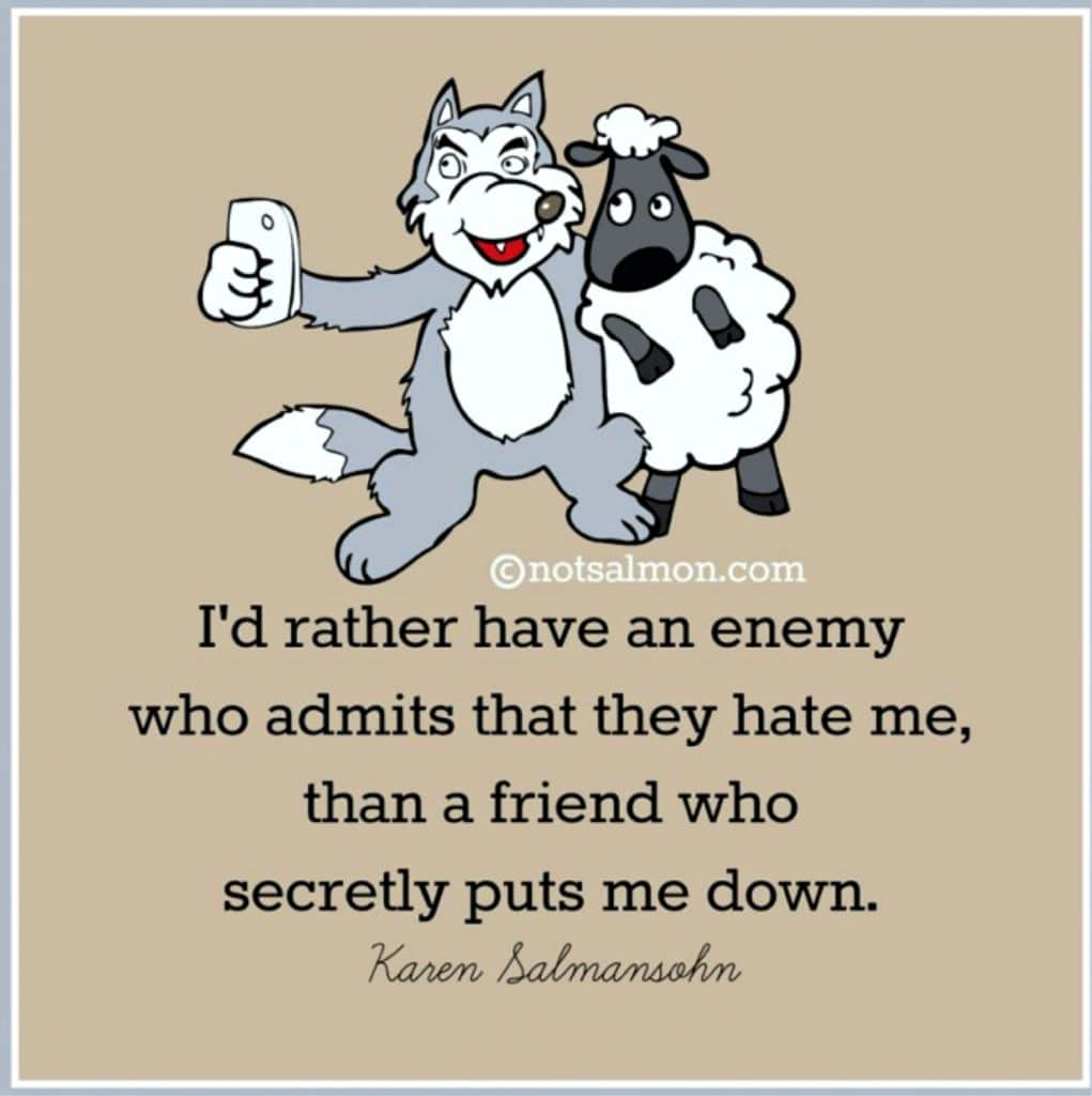 enemy friends frenemies quote karen salmansohn