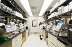 Cisco CCNA Exam Labs Certification: Preparing for Job Responsibilities
