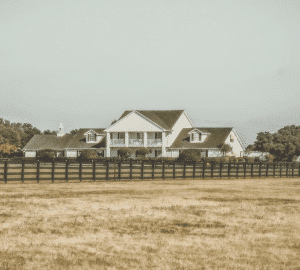 Things To Look For When Buying A Ranch in Texas