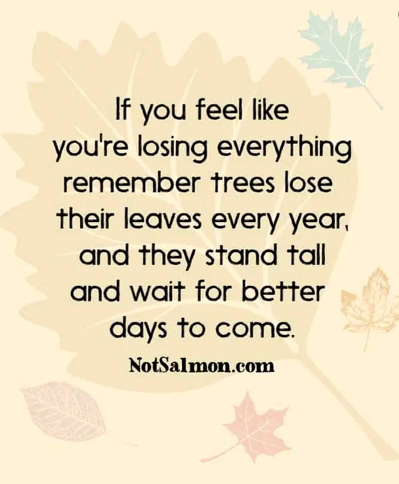 being strong quote stand tall like trees